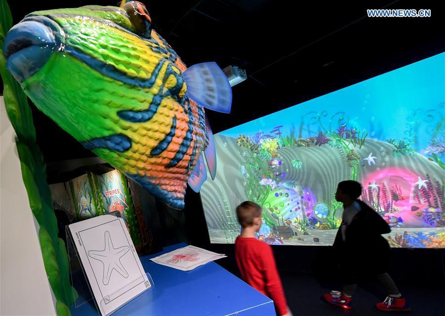 Children go to Sea Life Aquarium on Int'l Children's Day in New Zealand