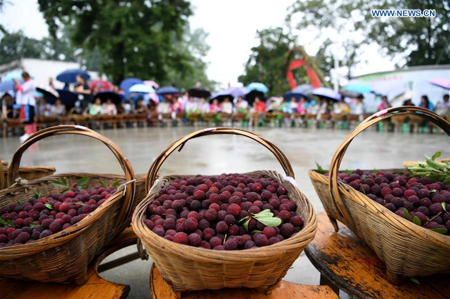 Waxberry festival held in Gaowen Miao ethnic village in Rongjiang, SW China