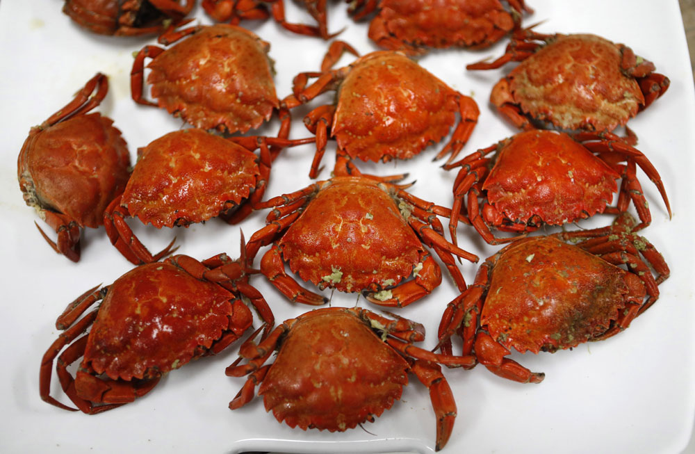 Scientists gather to find way to monetize invasive green crabs