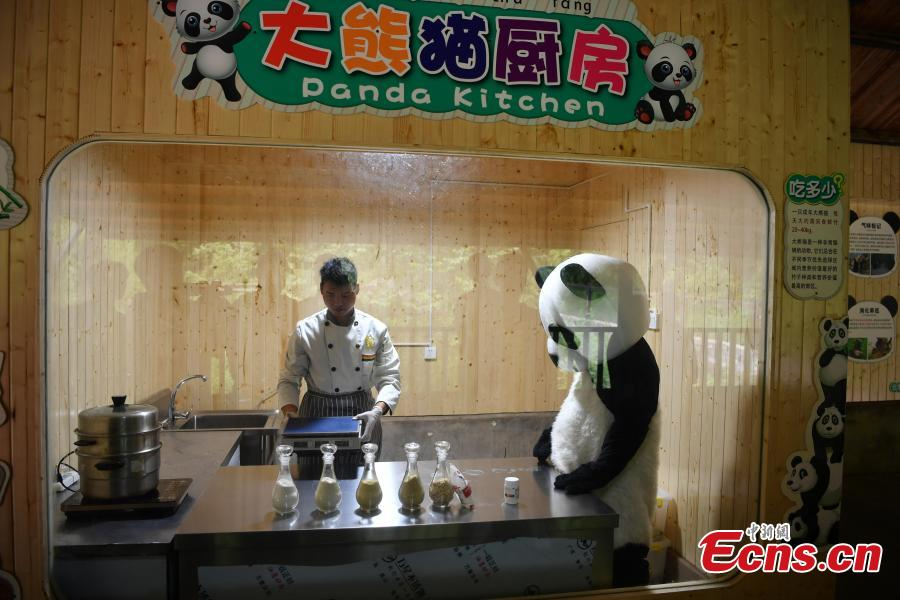 Yunnan park opens panda kitchen