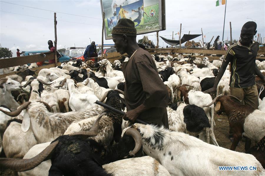 Herders sell livestock before Eid al-Adha festival across world