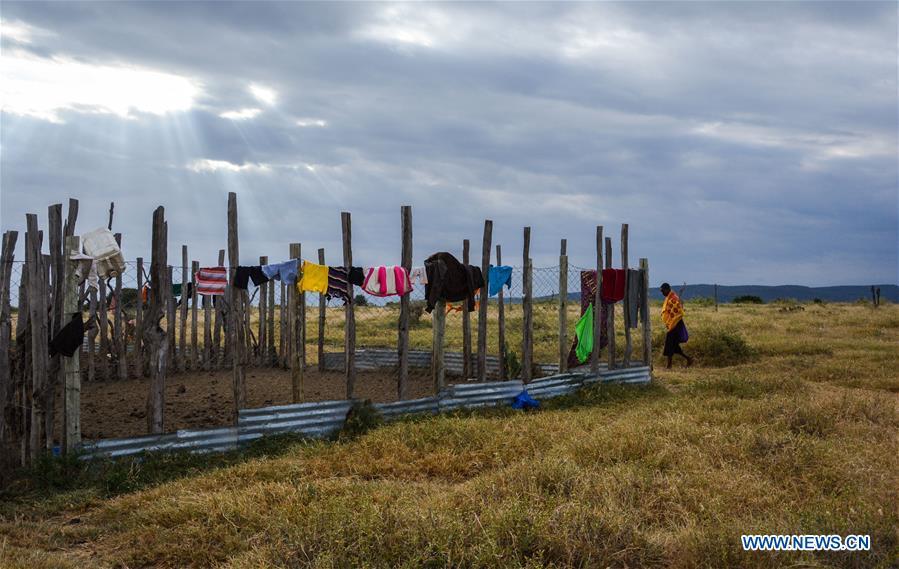 In pics: Chinese wildlife conservationist in Maasai Mara, Kenya