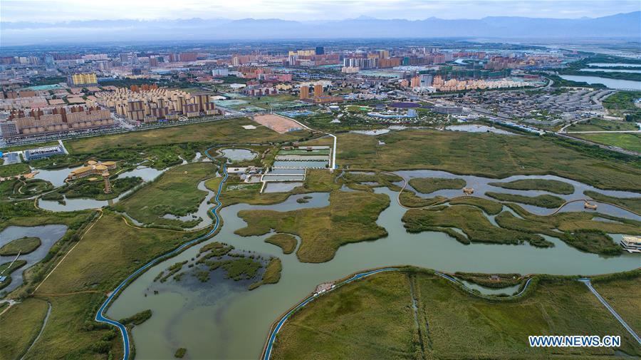 View of Zhangye National Wetland Park in China's Gansu