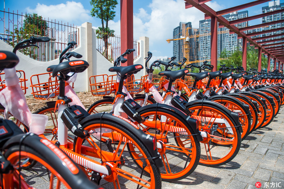 Mobikes parked at the side of a road.[Photo:IC]