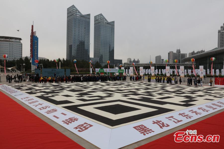 World's largest grain QR code seen in Harbin