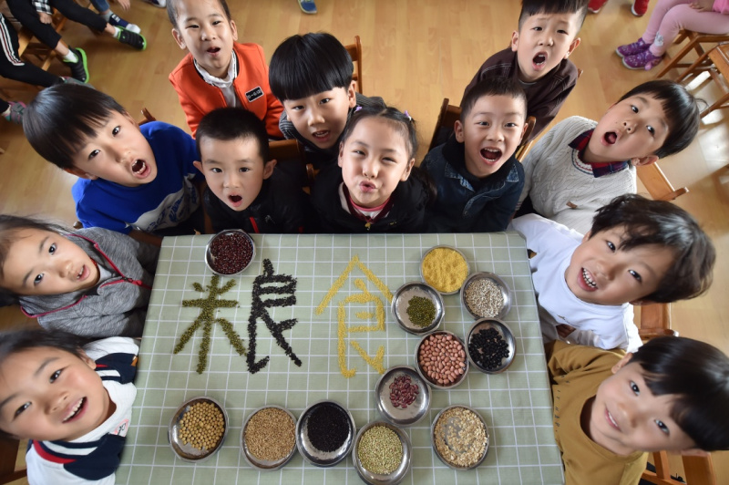 Educational activities held to mark World Food Day