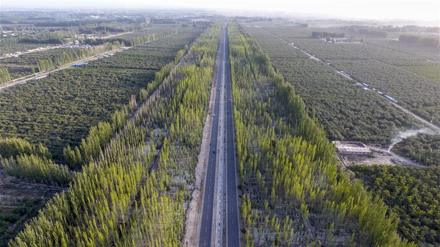 Xinhua Headlines: Man-made oasis: Xinjiang