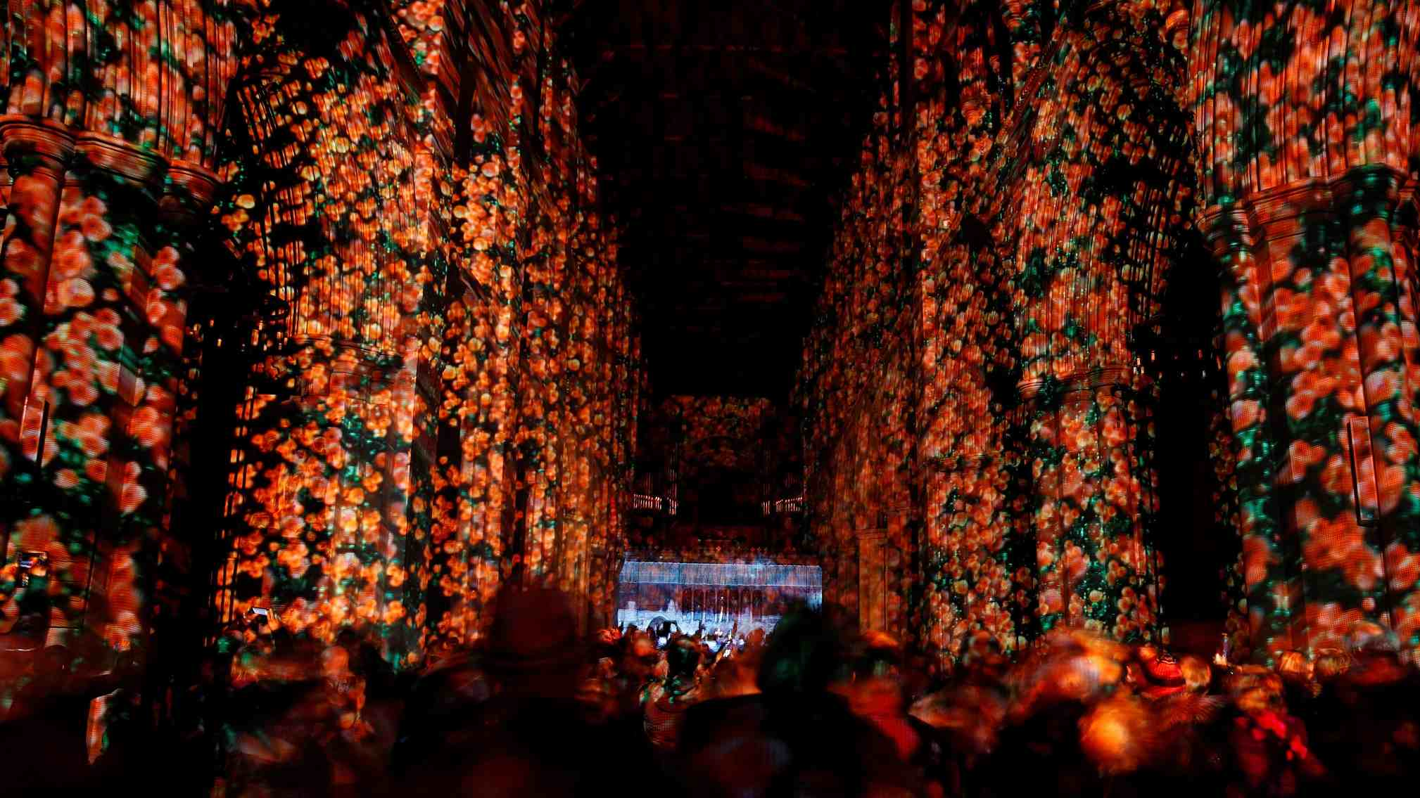 Projection of poppies at cathedral nave to commemorate the centenary of WWI