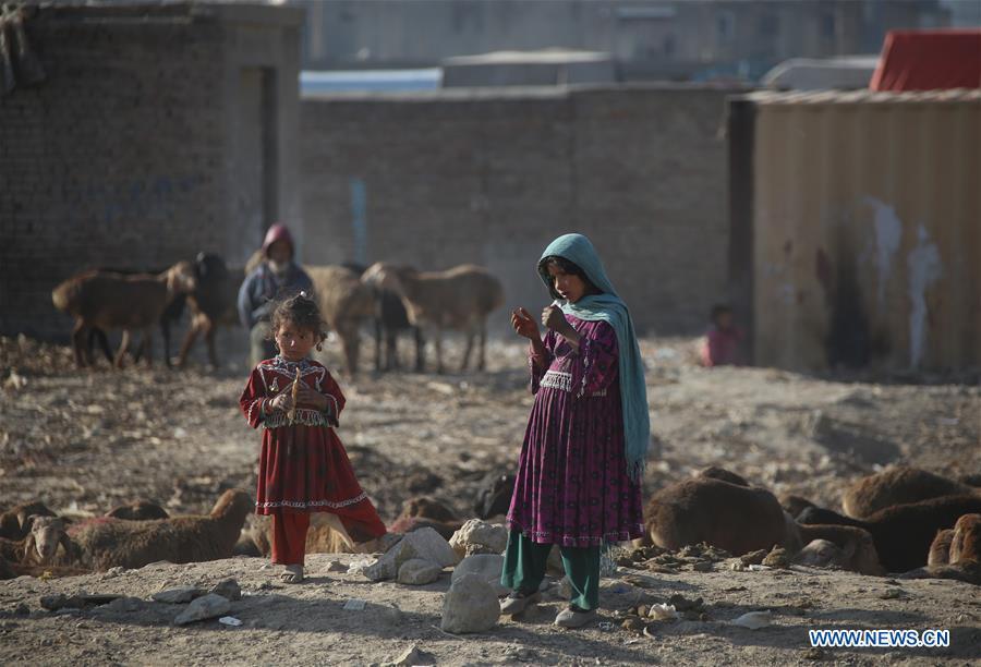 Afghan children seen on World Children's Day in Kabul