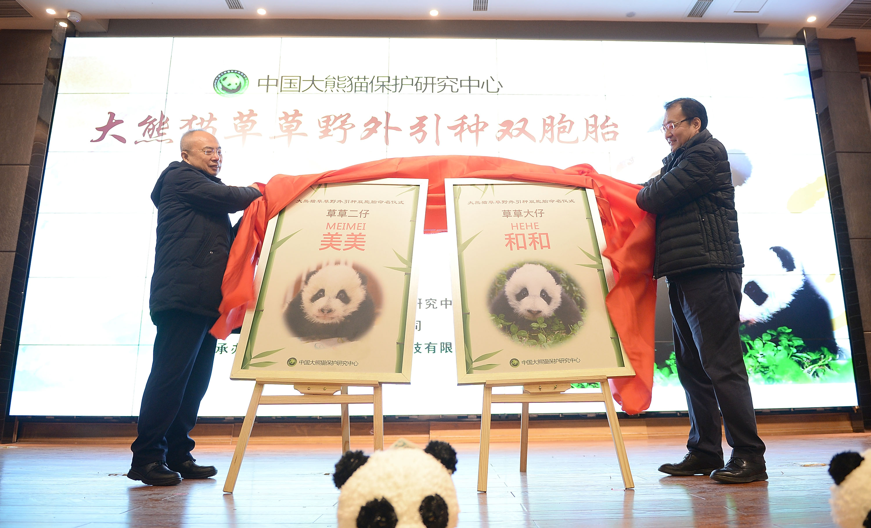 """First giant panda twins born to wild and captive parents named """"He He"""", """"Mei Mei"""""""