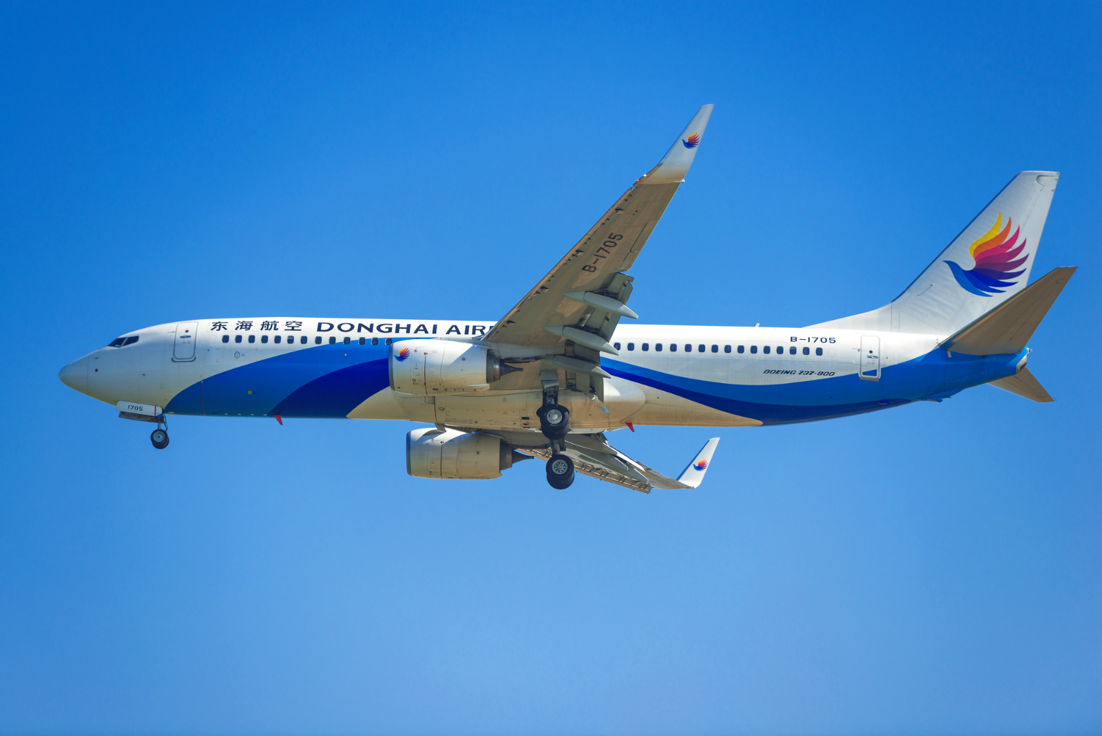 A Boeing 737-800 passenger jet of Donghai Airlines prepares to land at Shenzhen Baoan International Airport in Shenzhen city, south China's Guangdong province, 30 December 2014.[File photo: IC]