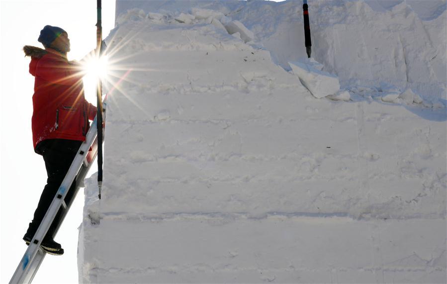 Int'l art elite snow sculpture competition held in Harbin
