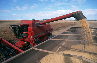 Russian soybeans have opportunity