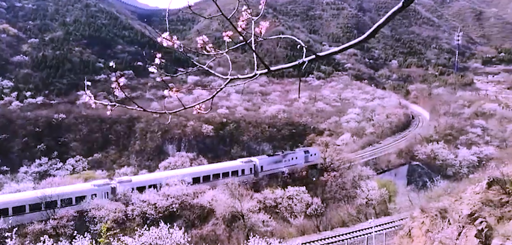 Video: Come aboard the train to Spring!