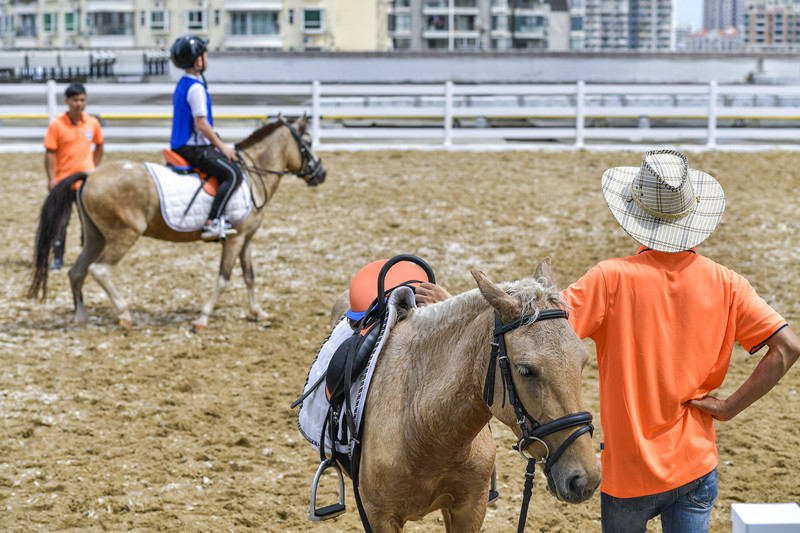Hainan ready for horse racing, sports lotteries