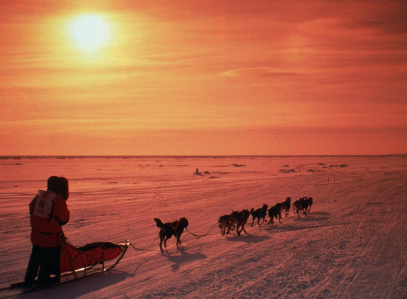 Turbulent year casts shadow over 2018 Iditarod
