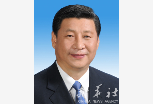 Xi stresses important role of Constitution