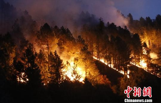Forest fire in SW China's Sichuan put out