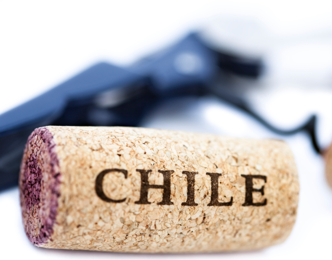 China becomes top market for Chilean winemakers