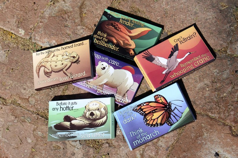 Valentine condom campaign wants lovers to think of animals