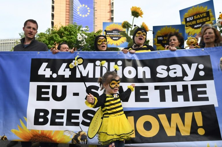 EU court upholds curbs on bee-killing pesticide