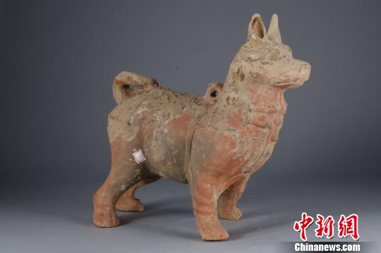Chongqing holds dog-themed exhibition to mark the Year of Dog