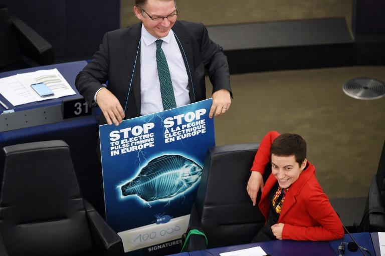 EU parliament calls for ban on electric pulse fishing