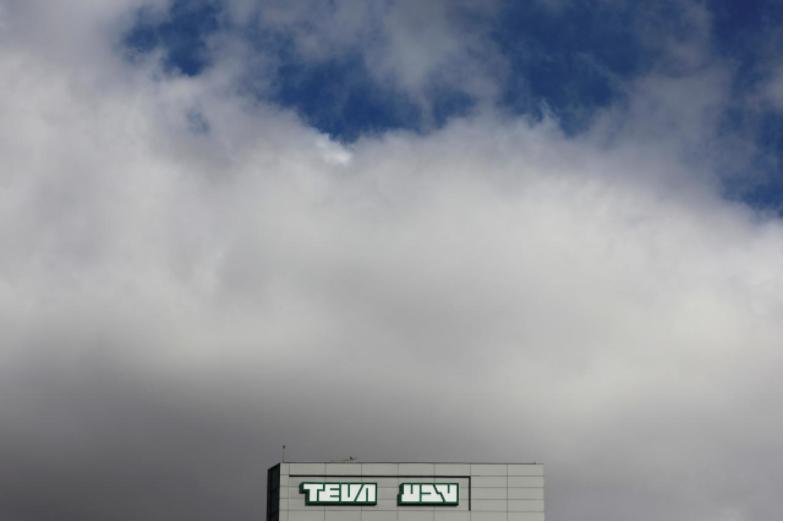 Teva Pharm directors cut their salaries in half: board member