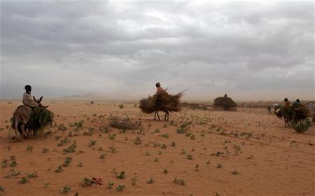 Image result for reuters, sudan sahara