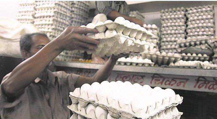 Indian egg prices soar 40%