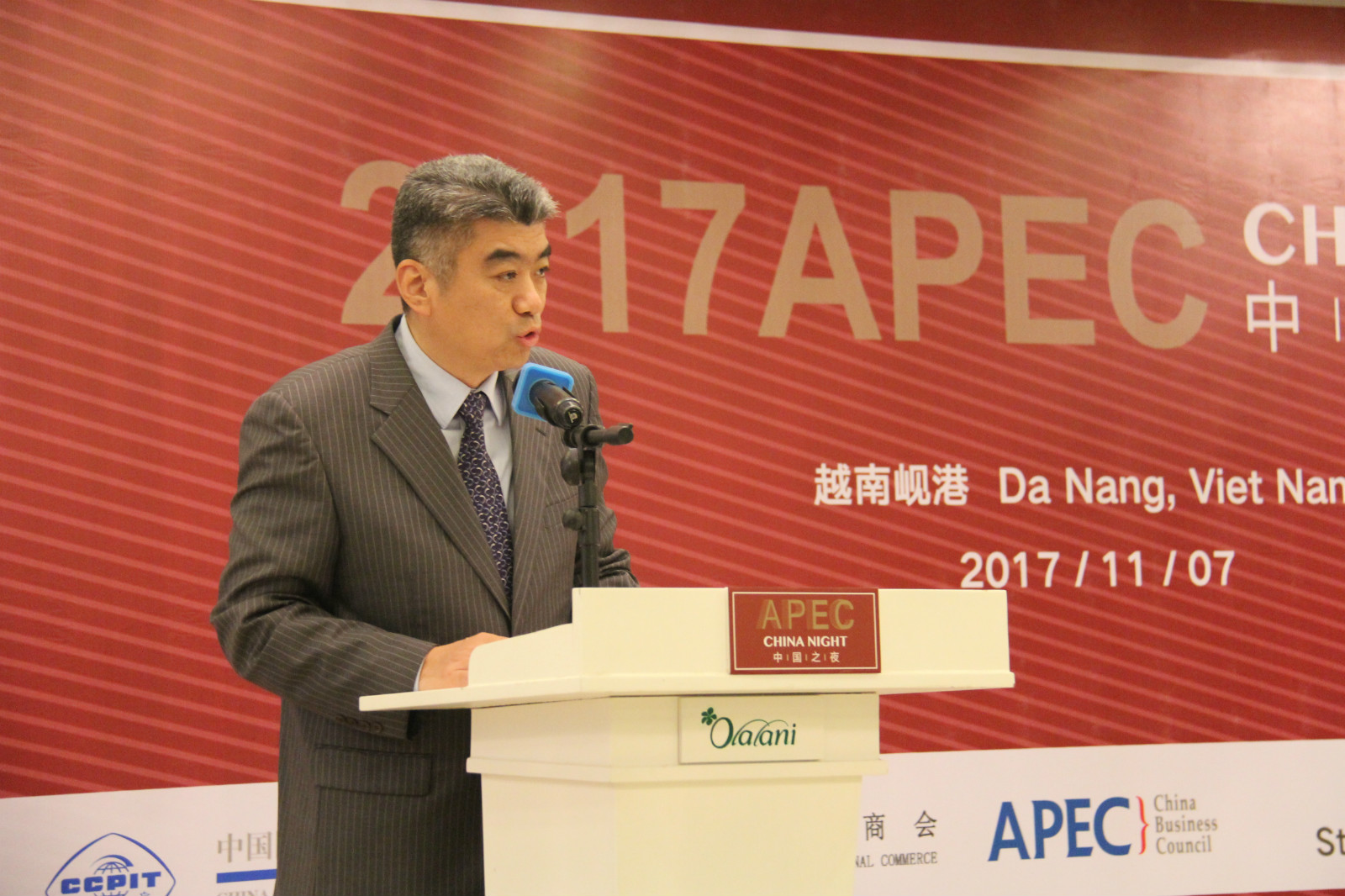 APEC Vietnam 2017 witnesses China growing influence
