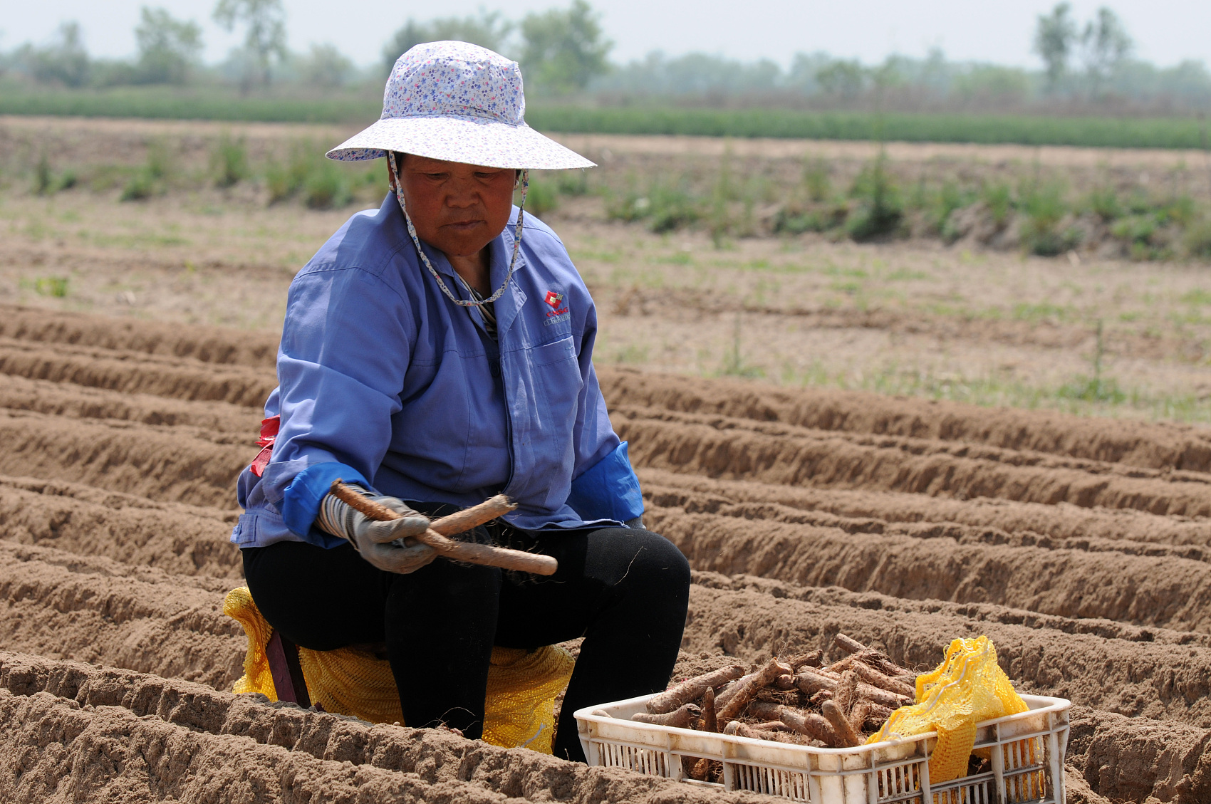 Lawmakers press for rural women's right to contract land
