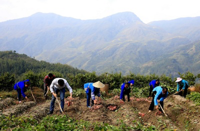 China' s poverty alleviation campaign holds torch for others