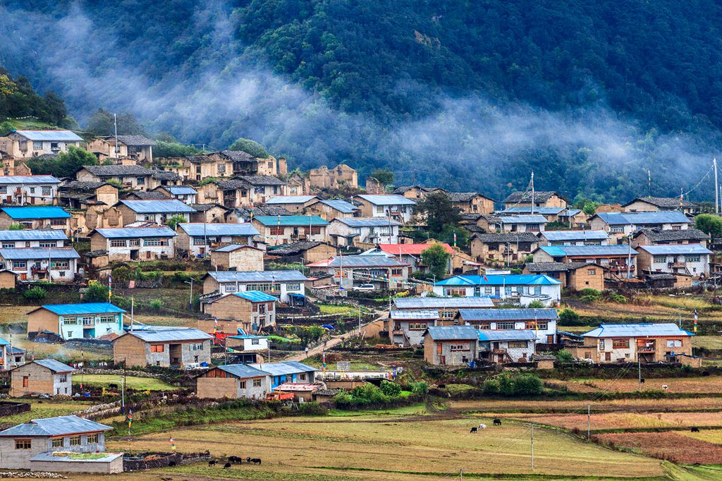 Tibet official promises all-out efforts to fight poverty