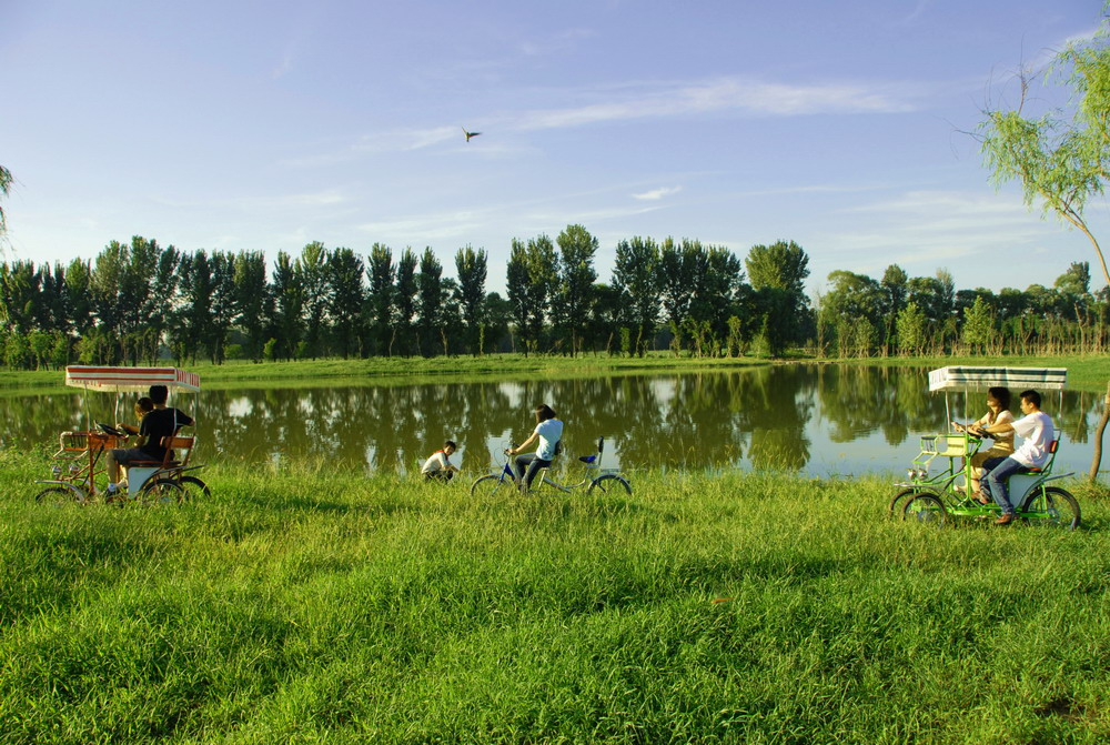 Beijing builds wetland park with processed waste water