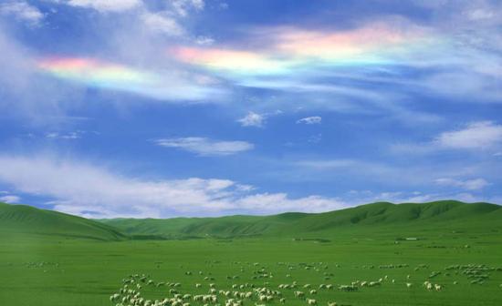 白音锡勒草原保护区.jpg