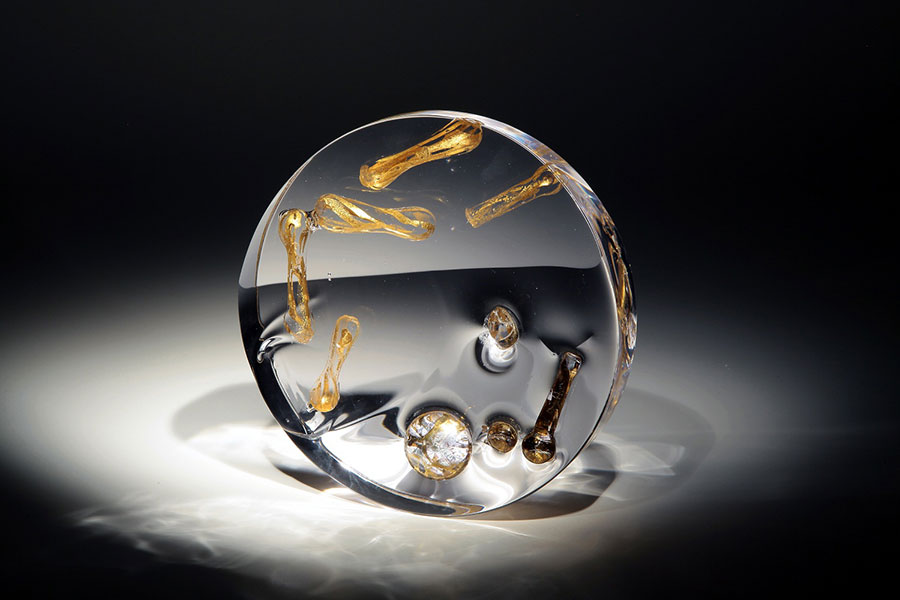 Chinese artist's glass art on show