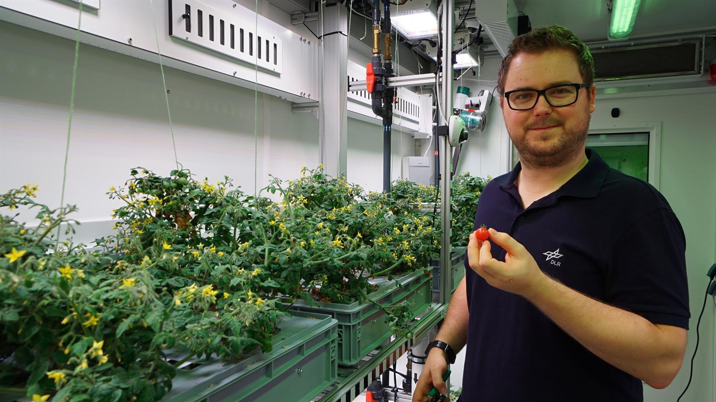 Vegetable harvest in Antarctica boosts scientists' plan to grow greens on Mars & moon