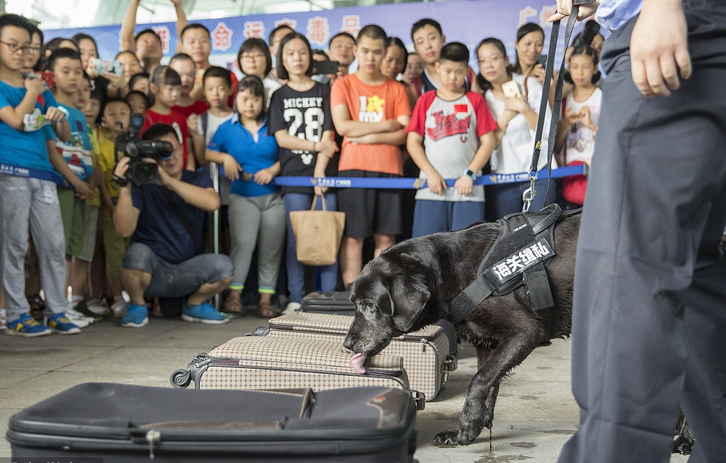 Guangzhou Customs helps children know fight against drug trafficking in China's Guangdong
