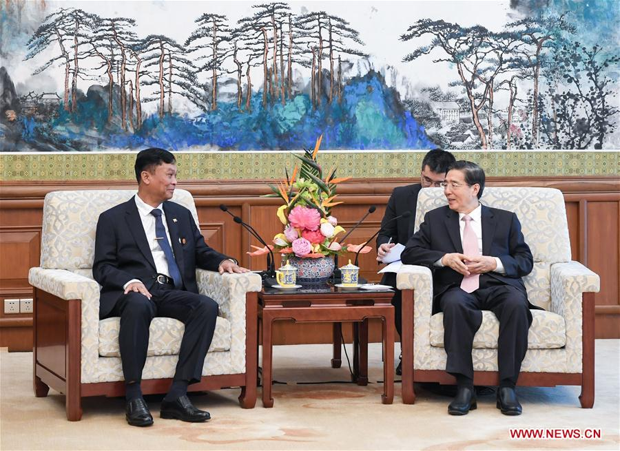 Senior CPC official meets Myanmar's home affairs minister