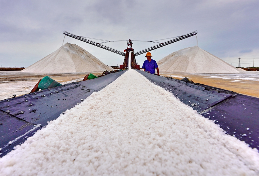 Sea salt harvest concludes in Tangshan City, N China