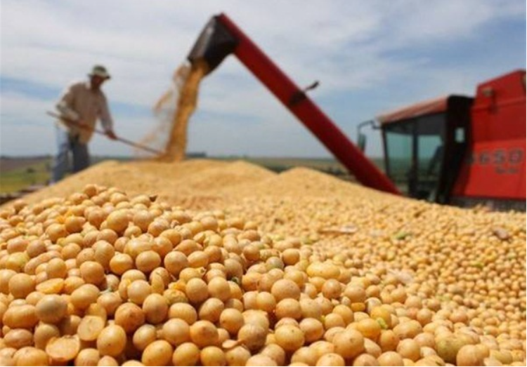 US soybean growers denounce additional tariffs on Chinese goods