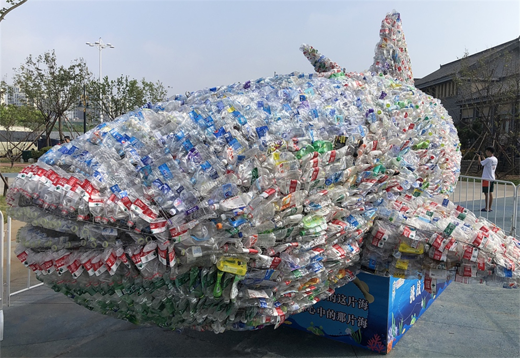 Shark sculpture made of plastic bottles goes on display