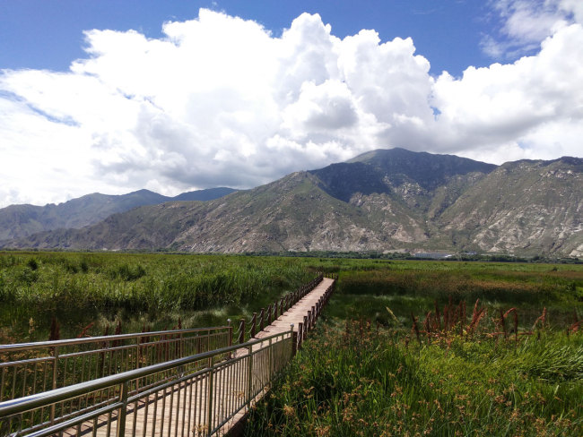 World's Largest Urban Wetland in Lhasa undergoes extensive protection