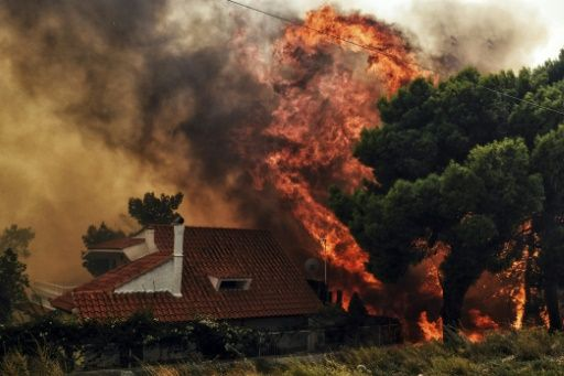 Greece wildfires death toll rises to 74: firefighters