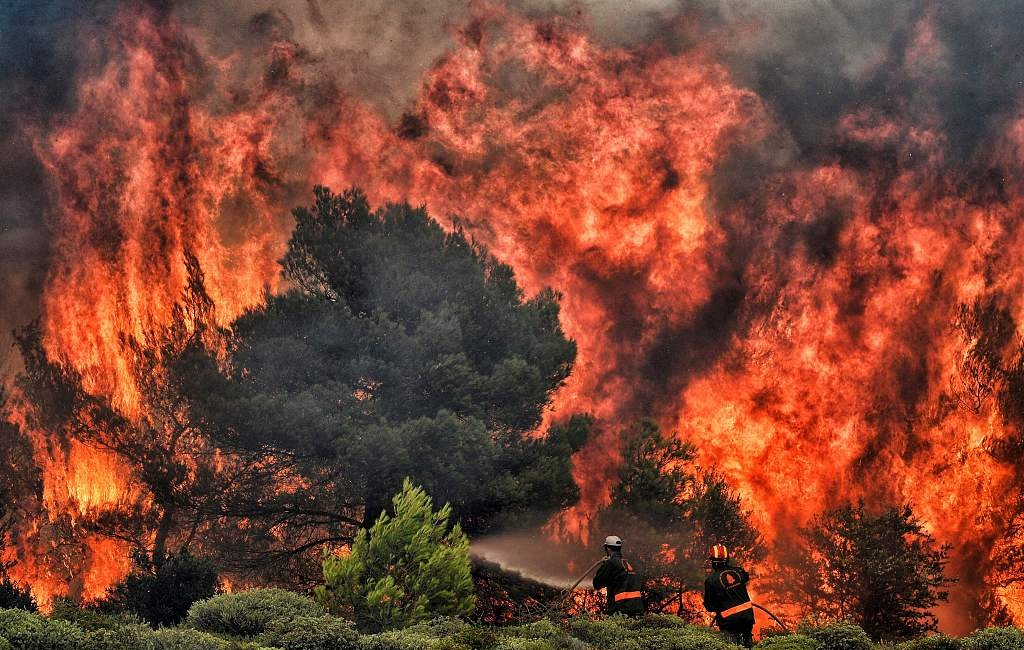 74 killed in Greek forest fire