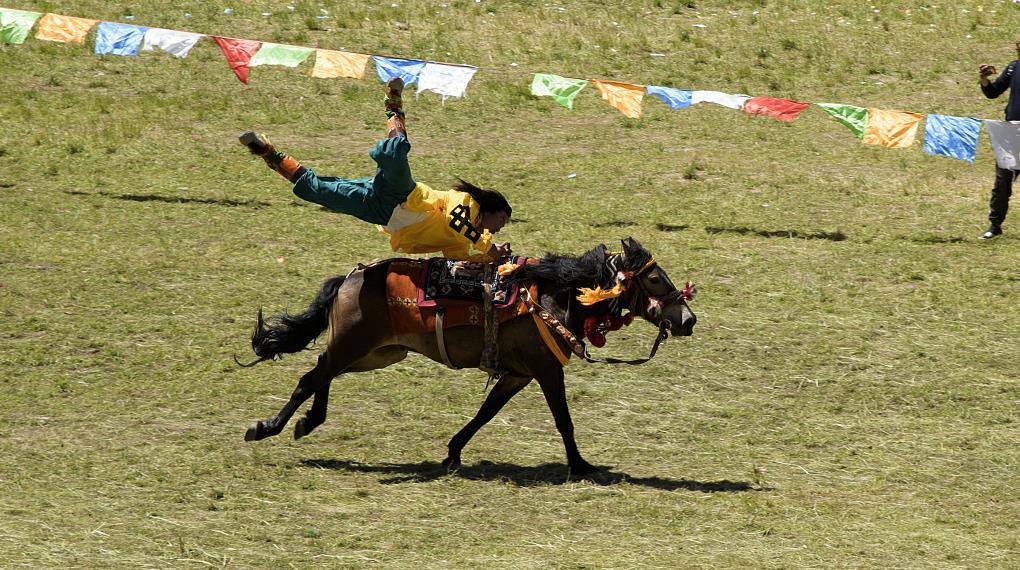 Horse racing festival opens in Qinghai