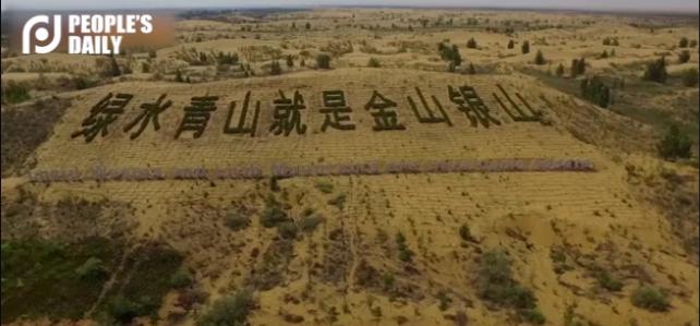 China uses new planting technology in Kubuqi desert
