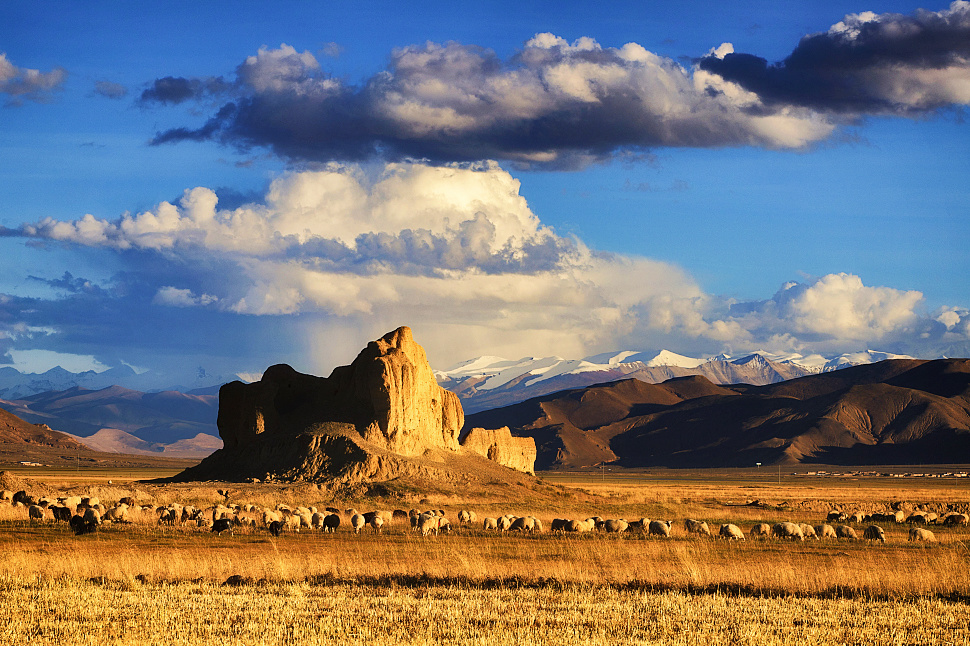 Tibet relics from 2,000 years ago suggest plateau Silk Road