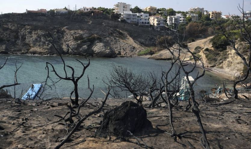 Greek minister resigns in forest fire aftermath
